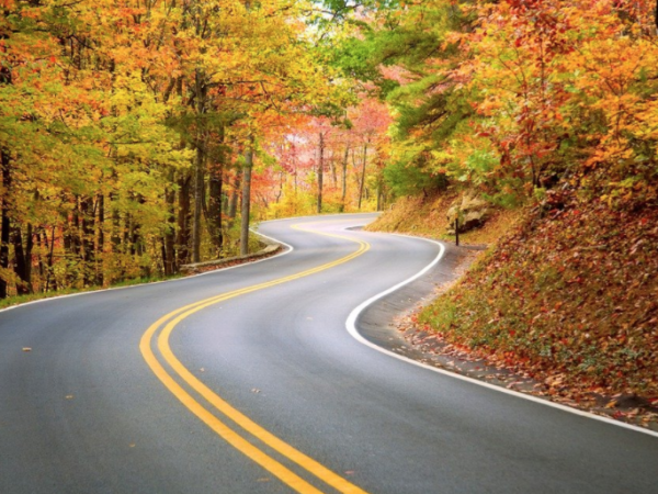 Winding section of road on a fall day